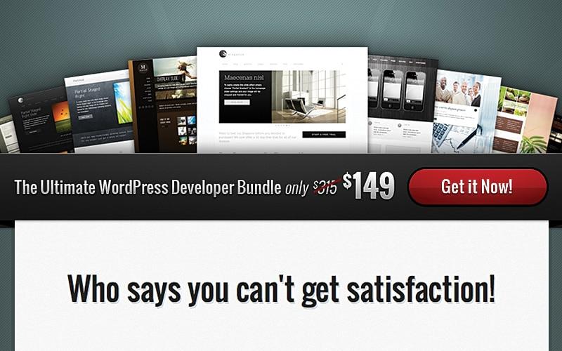 A premium WordPress theme