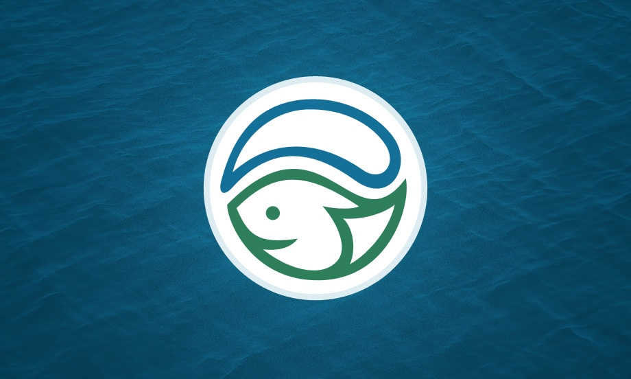 Stormwater Logo Design